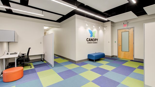 Canopy Children's Solutions Center of Excellence